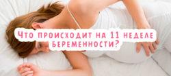 Что происходит на 11 неделе беременности?