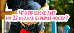 Что происходит на 22 неделе беременности?