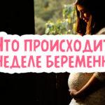 Что происходит на 26 неделе беременности?